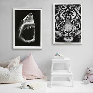 Black White Shark Tiger Canvas Poster Painting Print Animal Wall Kids Room Decor