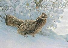 Early Snowfall - Ruffed Grouse, Robert Bateman, Ltd. Edition Litho, #143/950