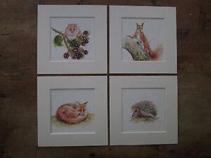 Watercolour Wildlife set NEW, Squirrel, Fox, Hedgehog, Fieldmouse