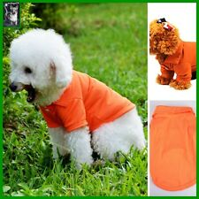 Schickes Hundeshirt T.Shirt Welpe Weste Pullover Chihuahua Orange in XS-S-M