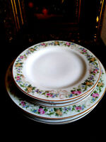 Fraureuth Floral 4 Dinner Plates  & 4 Salad,  set 8  Gold Trim  Vintage