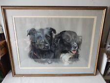 Fantastic Original Pastel Portrait of Two Collies Pauline Edwards Signed & Dated