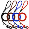5ft Nylon Rope Dog Leash Pet Collar Training Show Slip Lead Red Black Blue Brown