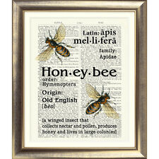 ART PRINT ON ORIGINAL ANTIQUE BOOK PAGE Vintage Dictionary Honey Bee Picture