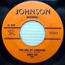 ANDY DIO mint minus JOHNSON Records 45 You Are My Sunshine b/w Bonnie Jean ws144