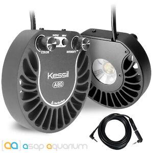 2x Kessil A80 Tuna Sun LED Lights & Link Cable Bundle 15 Watt Freshwater Plants