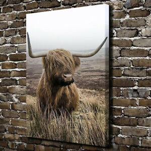 Highland Cow Prints Poster Canvas Painting Animal Nature Wall Art For Home Decor