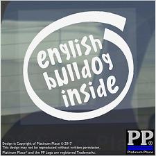 1 x Bulldog Inglese all'interno-Finestra, Auto, Furgone, STICKER, SEGNO, Adesivo, Cane, Pet, a bordo,