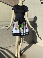 Irregular Ted Baker Neoprene Skater Dress