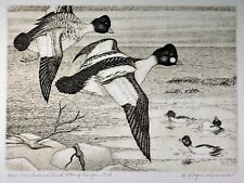 1949 Federal Duck stamp print and stamp signed by the artist Roger Preuss