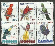 Briefmarken aus Belgien mit Vögel-Motiv