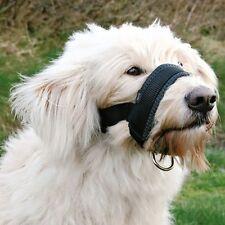 L Perro Bozal bucle con anilla Para Cabeza De Plomo totalmente ajustable acolchado cómodo