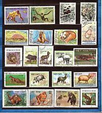 VIETNAM  Les animaux : singes,ours,herisson,tapir,ecureuil,divers  97M-231T5