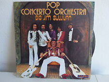 POP CONCERTO ORCHESTRA Big Jim Sullivan 64018