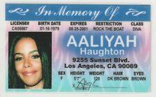 Aaliyah Haughton Queen Of The Damned the Vampire Lestast Drivers License Romeo