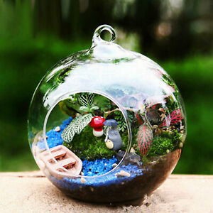 10pcs Clear Glass Ball Globe Shape Terrarium Ball Flower Hanging Planter Terrari