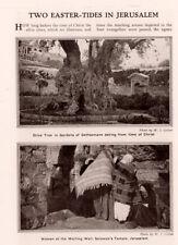 1909 C  MAGAZINE PHOTO  W J GELINK OLIVE TREE GETHSEMANE WAILING WALL WOMEN