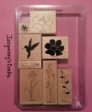 Stampin Up DREAM A LITTLE flowers hummingbird 2 step leaves EUC (14-13)