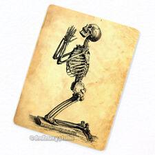 Praying for Immortality Deco Magnet, Decorative Fridge Antique Anatomy Medical