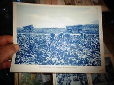 Image Pédagogique 18 x 24cm IWUY Nord Arrachage des Betteraves Sucrières ( Sucre