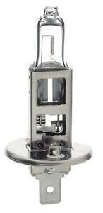H1 12V 55W Globe Plus 50% CX1255BL2 2 pack