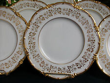 COALPORT V9864 GOLD VINES & FLOWERS (c.1950's) DINNER PLATE- EXCELLENT!! RARE!!