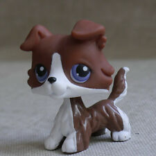 "RARE  LPS COLLECTION LITTLEST PET SHOPDeep  Brown Collie dog  TOY 2"" #"