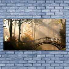 Glass print Wall art 140x70 Image Picture Forest Bridge Architecture