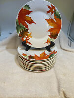 Set Of 11 ROYAL NORFOLK Dessert Plates Autumn Leaf And Acorn