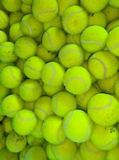 4 6 8 or 10 Used Tennis Balls For Dogs. Sanitised Branded Balls. Good Condition