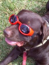 Doggles ILS Sunglasses/ Dog Protective Eyewear - RED - LARGE- Dogs 50-100 lbs