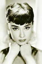 Audrey Hepburn Sepia Poster! Beauty  Iconic Simple Classic Elegant Dorm Décor!!