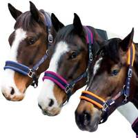 Loveson Fleece Lined Padded Headcollar Navy/Blue/Orange/Pink Pony/Cob/Full