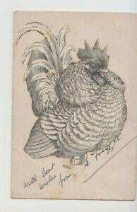 POSTCARD NOVELTY HAND DRAWN IMAGE OF CHICKEN APPLIQUE - signed artist