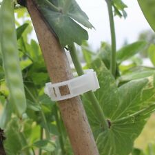 Practical White Tomato Clips Connects Plants Supports Vines Trellis Cages Fixed`