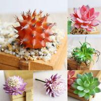 Artificial Succulent Plant Garden Miniature Fake Cactus DIY Floral Decor Parts
