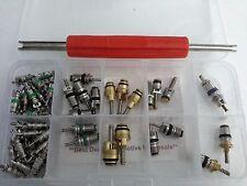 60 pcs A/C Valve Core Shrader Valves R134A kit of 10 kinds of vlvs w/ free Tool