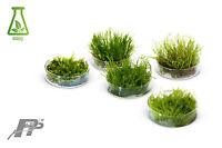 Aquarium Moss - Live Aquarium Plants - Many Species - In Vitro - Very Easy