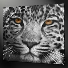 "LEOPARD SUNSET PAINTING WALL ART PICTURE BOX CANVAS PRINT 20/""x16/"" FREE UK P/&P"