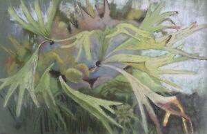 MICHAEL HASWELL - STUDY OF A PLANT - MODERN BRITISH ARTIST