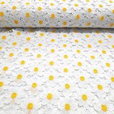 Spitze weiss gelb bezaubernd Margeriten Blumen
