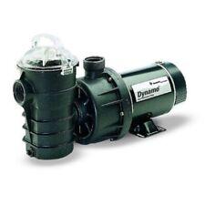 Pentair 340204 Stainless Steel 115V 1Hp Black Dynamo Two-Speed Pool Pump