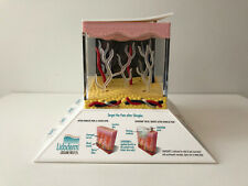 Endo Pharmaceuticals Drug Rep 3D Light Up Lidoderm Lidocaine Patch Model LD-1533
