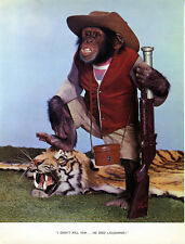 1 Vintage Art Photo Page from Chimp Chat Book 1960 Monkey Tiger Big Game Hunter