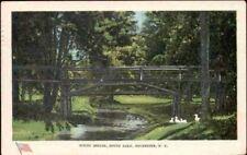 (n85) Rochester NY: South Park, Rustic Bridge