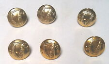 Irish  Army Irish Volunteer IV 6 Old Buttons SMALL SIZE S/Bright