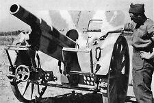WW2 -Obusier allemand FH 14/19 de 10cm de fabrication tchèque -Colleville Jun 44