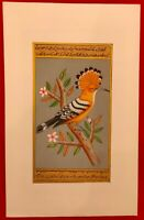 Hand Painted Hoopoe Bird Birds Miniature Painting India Artwork Paper Nature art