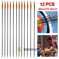 "31"" Archery Arrow Fiberglass Arrows Target Practice Hunting Compound Bow/Quiver"