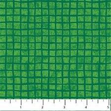 Northcott Animal Alphabet Bright Green Check Children Baby Kid Quilt Fabric 1A
